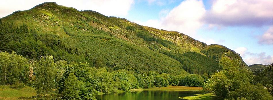 Green Scotland by Wickboldt